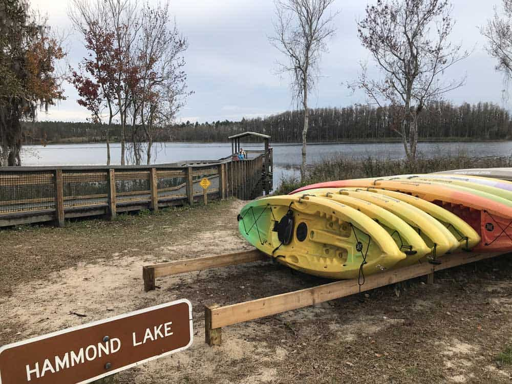 You can rent kayaks to paddle on Hammond Lake in Lake Louisa State Park in Clermont. (Photo: Bonnie Gross)