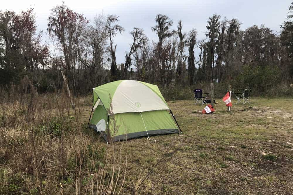 There are 56 campsites, many suitable for large RVs, but they will be more attractive when the trees grow tall enough to provide shade and the vegetation grows to offer more privacy. (Photo: Bonnie Gross)