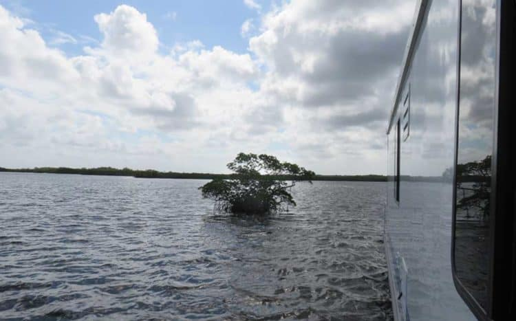 We loved the changing view and the Florida sky as we cruised in our houseboat in Everglades National Park (Photo: Bonnie Gross)