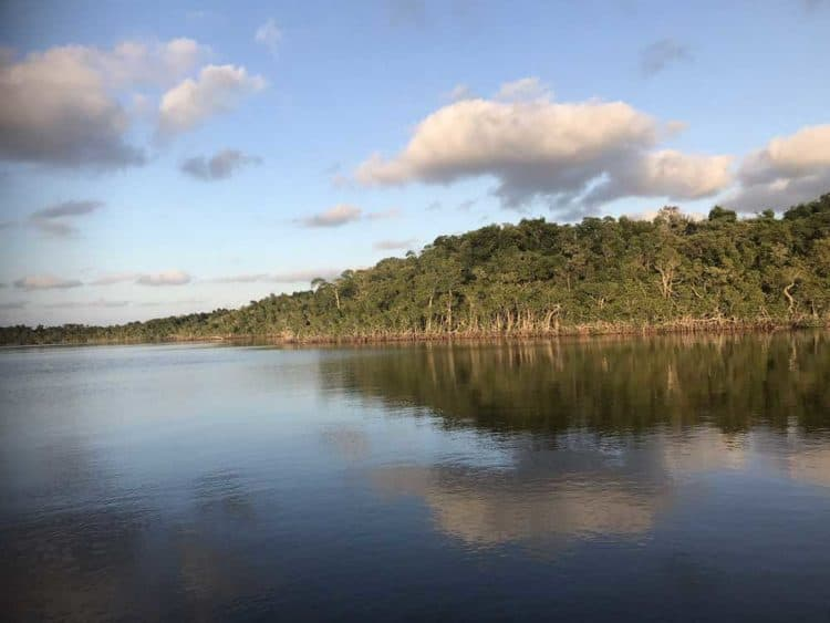 houseboat scenery National parks in Florida: 11 treasures, even some you haven't visited