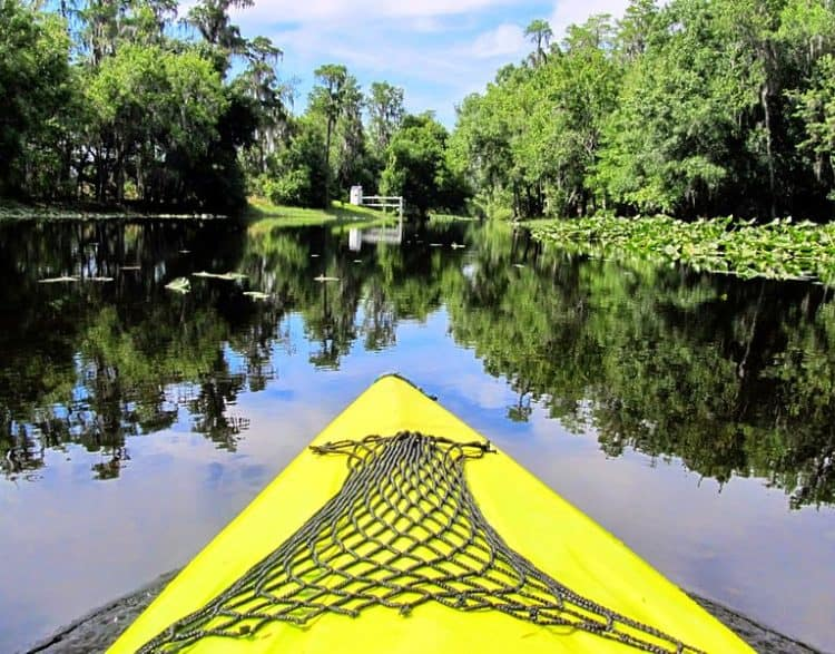 Nature parks in Orlando: Paddling on Single Creek (Photo: Miosotis Jade via Wikimedia)