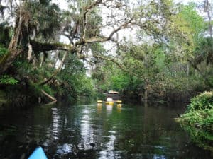 HRSP riverlaunch Hillsborough River State Park offers a wilderness experience not far from Tampa