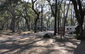 Wide view of the Hammock Campground Loop at Hillsborough River State Park. (Photo by Bob Rountree)