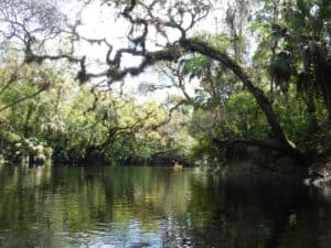 Paddling the Hillsborough River