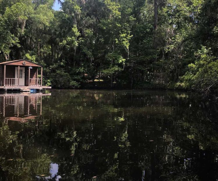 Welaka Springs is a small (third magnitude) spring surrounded by private property. The only man-made element in the pretty cove with the spring is a simple houseboat. It's a lovely spot. (Photo: Bonnie Gross)