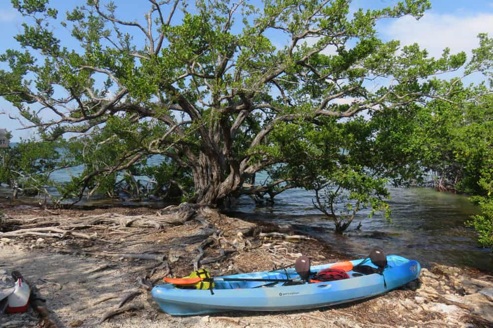 Indian Key Historic State Park is a historic island off Islamorada. (Photo: David Blasco)