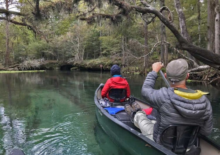 Paddling under a canopy of trees at Ichetucknee Springs State Park (Photo: Bonnie Gross)