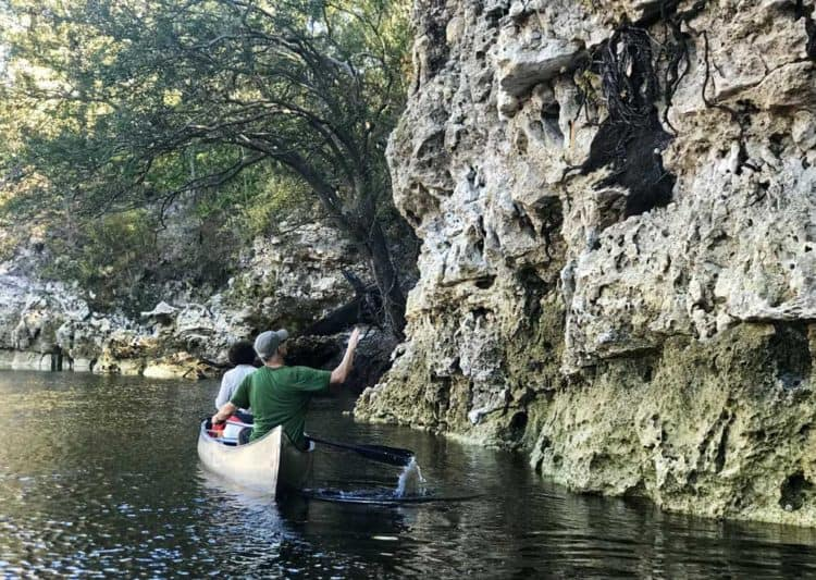 Canoeing close to a Suwanee bluff. The Suwanee offers some of the best kayaking in Florida.