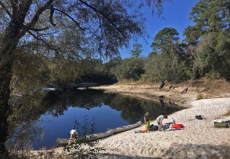 Sandy beach along Suwanee River