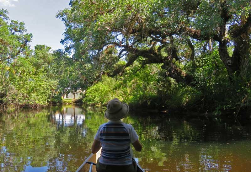 Telegraph Creek, a tributary of the Caloosahatchee River near Fort Myers (Photo: David Blasco)