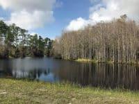 j.w. corbett wildlife management area
