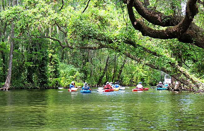 kayaking Dora Canal (Photo: Ed and Deb Higgins)