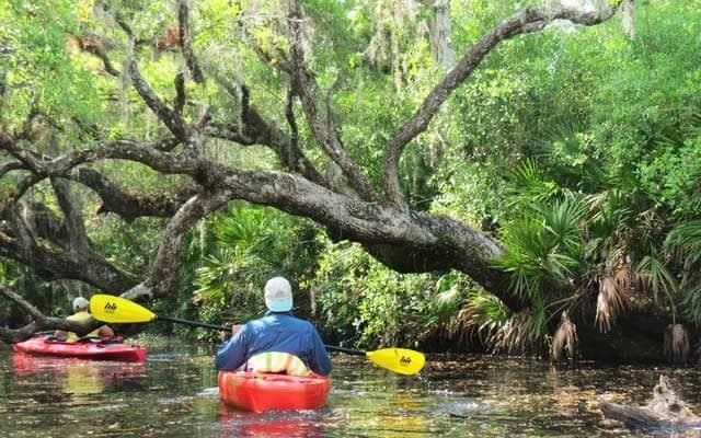 Kayaking Deer Creek in North Port.