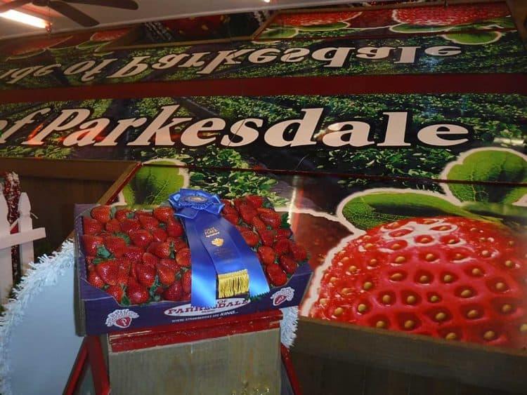 strawberry festival blue ribbon parkesdale famrs