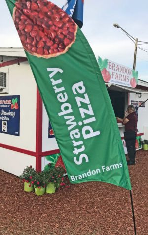 florida strawberry festival strawberry pizza