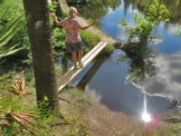 little big econ 550x368 1 Top hiking trails near Orlando: Little Big Econ State Forest