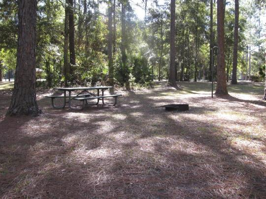 Rodman Campground State Park