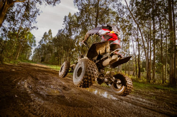 atv quad canstock Florida State Forest campgrounds, off-road vehicle trails open