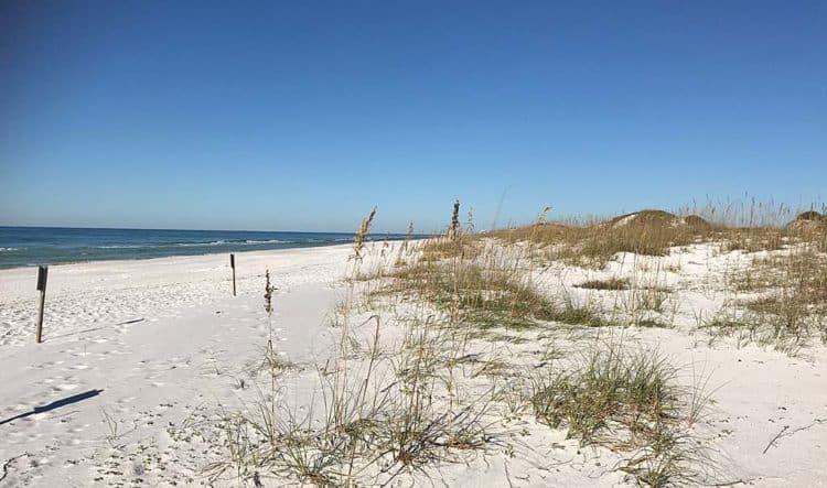 grayton beach scene Beach camping in Florida: 14 sandy sojourns