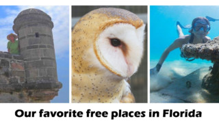 our favorite free places in florida
