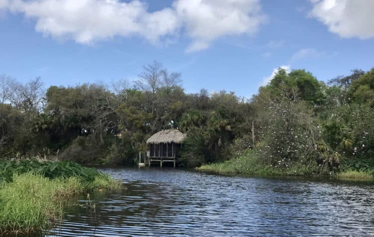 Between Jiggs Landing and Linger Lodge, the Braden River is largely lined with homes on at least one side, but most of the time, these make for interesting scenery. (Photo: Bonnie Gross)