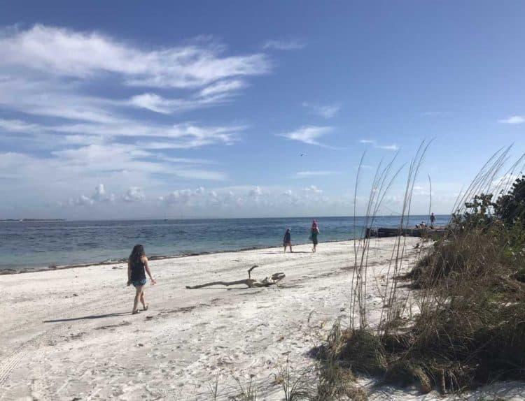 The beach at Egmont Key. (Photo: Bonnie Gross)