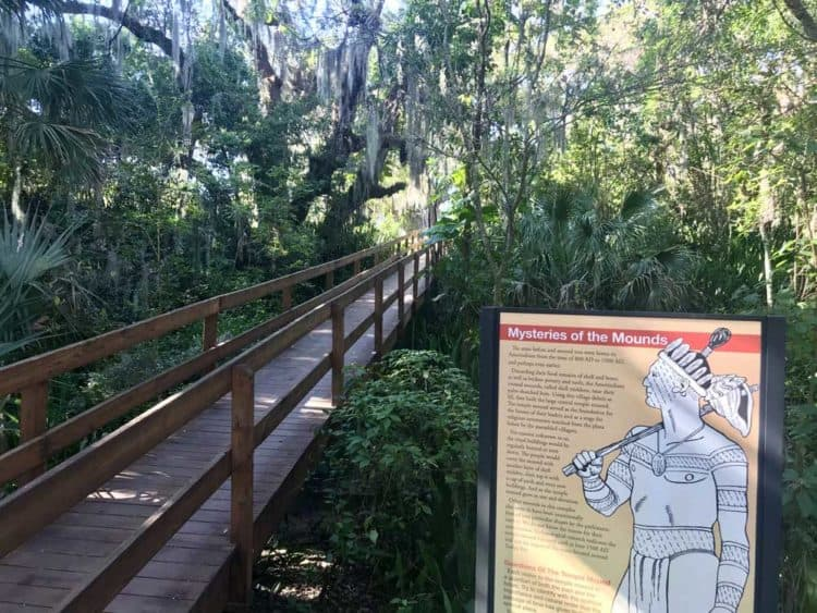 Emerson Point Preserve is an exceptional county park, off the beaten path on the southern end of Tampa Bay. There is excellent hiking and kayaking. A real gem is the Portavant temple mound. (Photo: Bonnie Gross)
