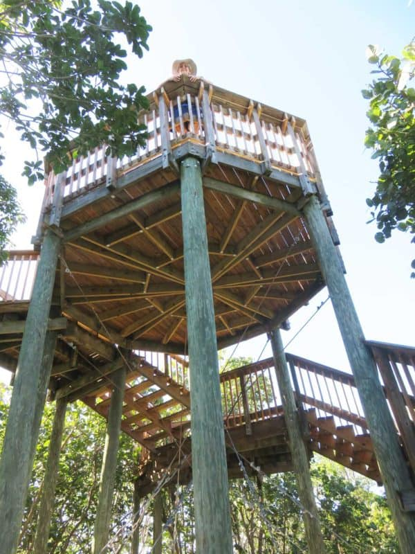 The observation tower on a hiking trail at Emerson Point Preserve in Palmetto (Photo: David Blasco)