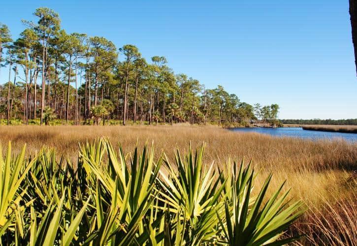 Faver Dykes Vera Jordan 20 8 inviting campgrounds at Florida State Parks along I-95