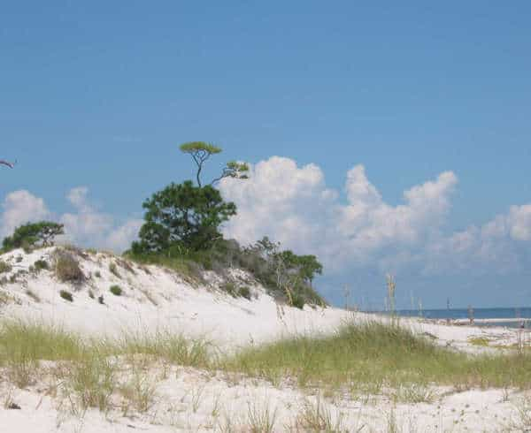 Gulf Islands NS National parks in Florida: 11 treasures, even some you haven't visited