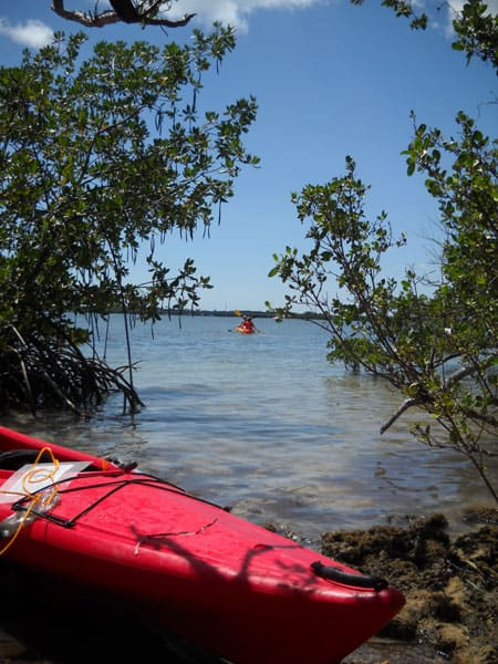 Kayaking to Indian Key in Islamorada