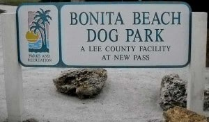 Dog Beach at Lovers Key