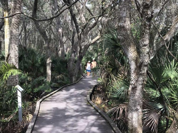 The boardwalk behind the Merritt Island National Wildlife Refuge Visitor Center is lovely and handicapped accessible. (Photo: Bonnie Gross)