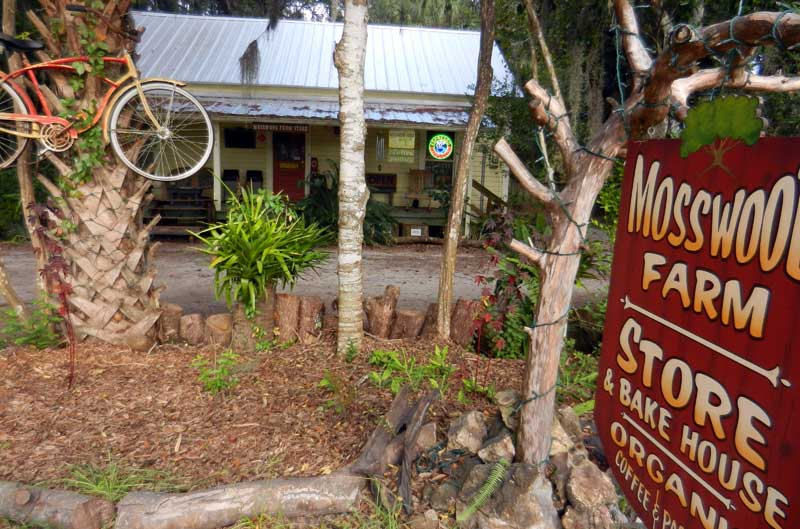 """Cafe in """"downtown"""" Micanopy."""
