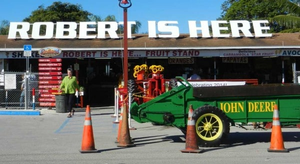 There are antique cars and farm vehicles as well as live music on weekends at Robert Is Here.
