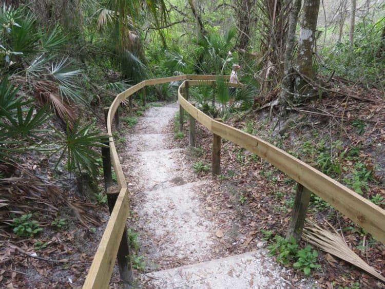 The kayak launch at Rye Preserve along the Manatee River has stairs down a steep bank and a sharp turn. Small, light kayaks can make it. Our canoe could not. We launched instead at Ray's Canoe Hideaway. (Photo: David Blasco)