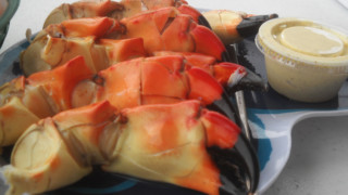 Florida stone crabs at Triad Seafood. (Photo: Bonnie Gross)