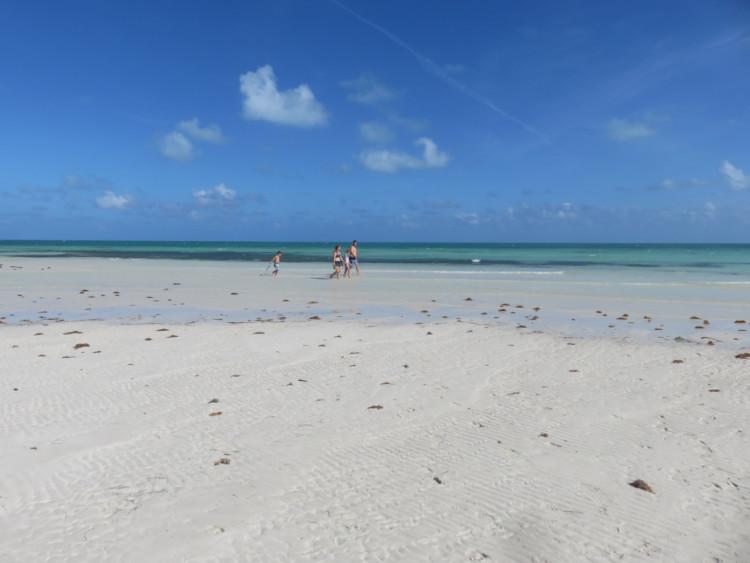 At low tide, a long white sandbar forms along Loggerhead Beach at Bahia Honda State Park. (Photo: David Blasco)