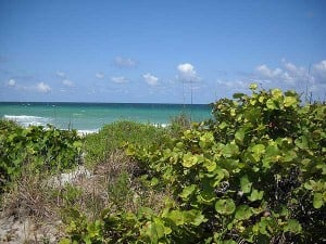 Broward's 'natural' beach: Mizell-Johnson State Park (formerly John U. Lloyd)