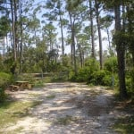 big lagoon campground Best beach camping in Florida's Panhandle