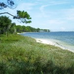 big lagoon sp Best beach camping in Florida's Panhandle