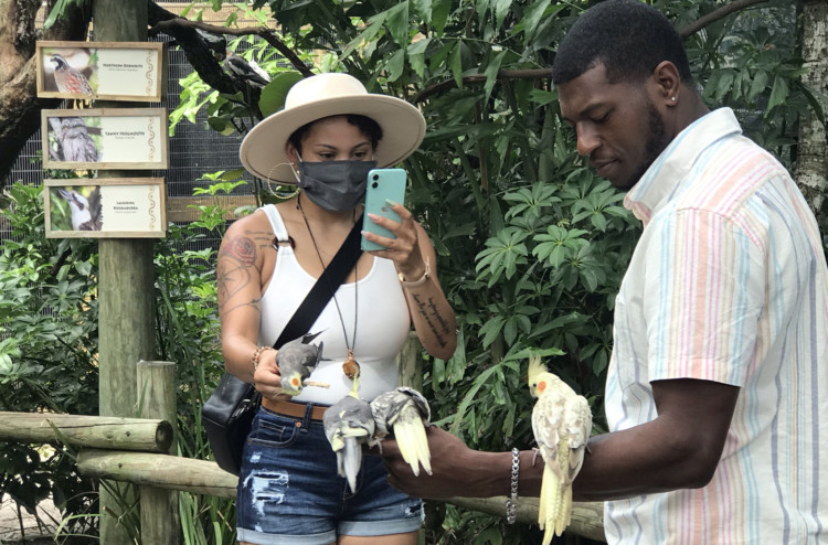 At the Brevard Zoo, there are two walk-in aviaries where visitors can interact with birds. (Photo: Bonnie Gross)