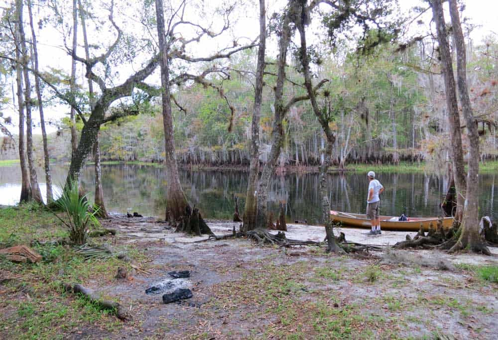 This primitive campsite is a camping site while kayaking Fisheating Creek.. (Photo: Bonnie Gross)