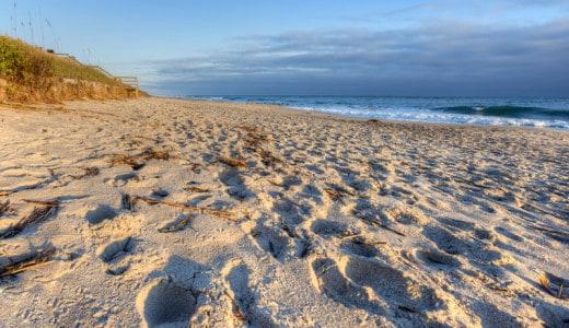 Apollo Beach, Canaveral National Seashore