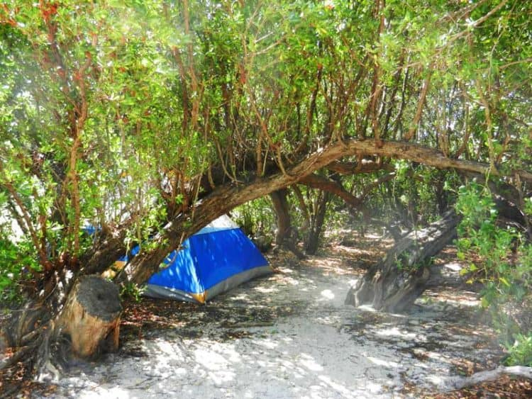 dry tortugas campsite Primitive camping on dozens of starlit islands in Florida