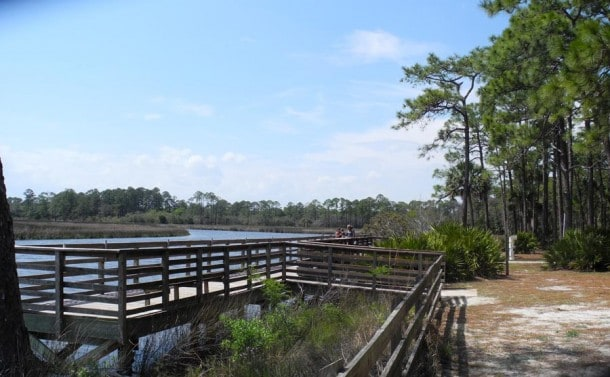 fishing dock at faver dykes state park