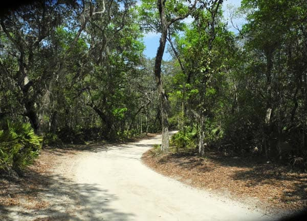 Faver-Dykes State Park entrance road