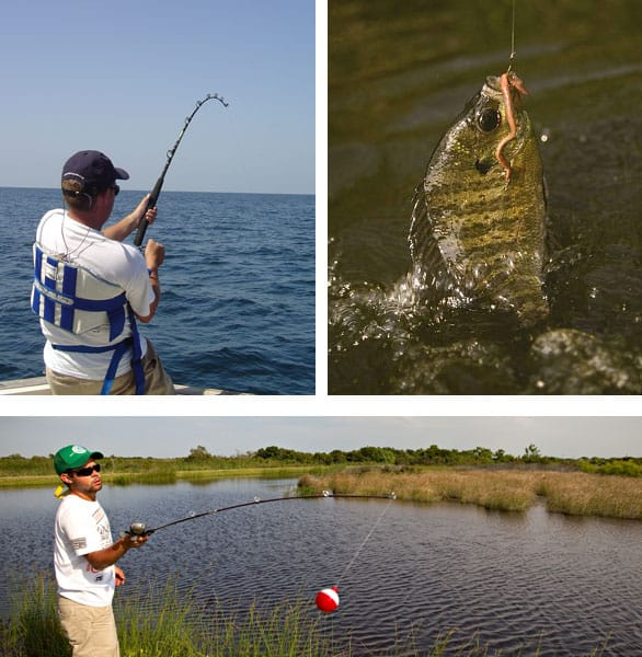 license-free fishing days in Florida