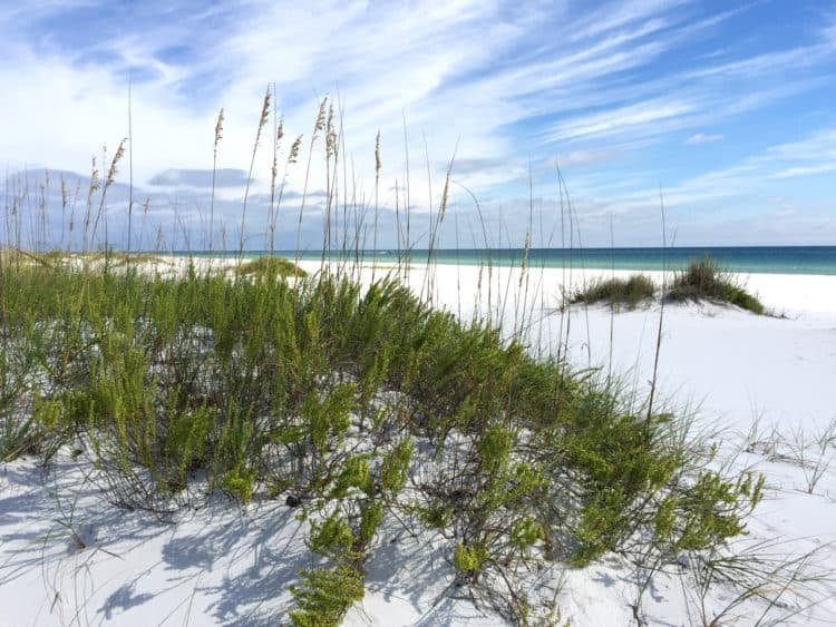 fort pickens 1 Beach camping in Florida: 14 sandy sojourns