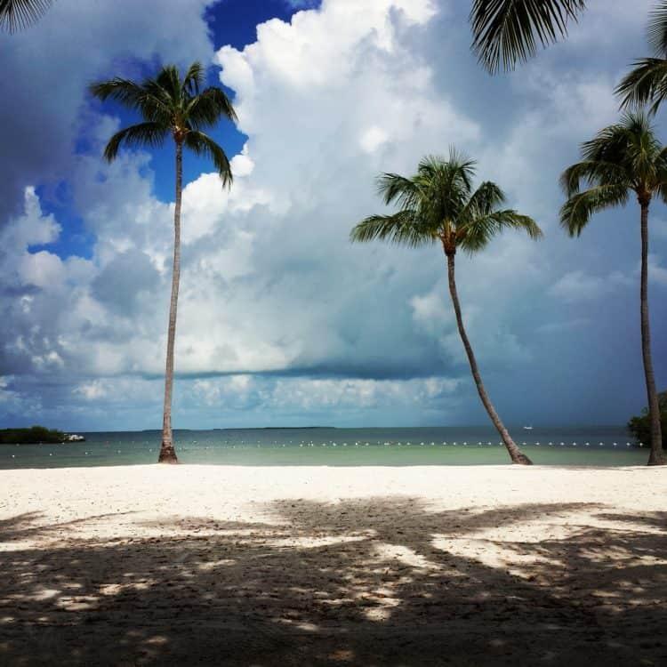 founders park beach